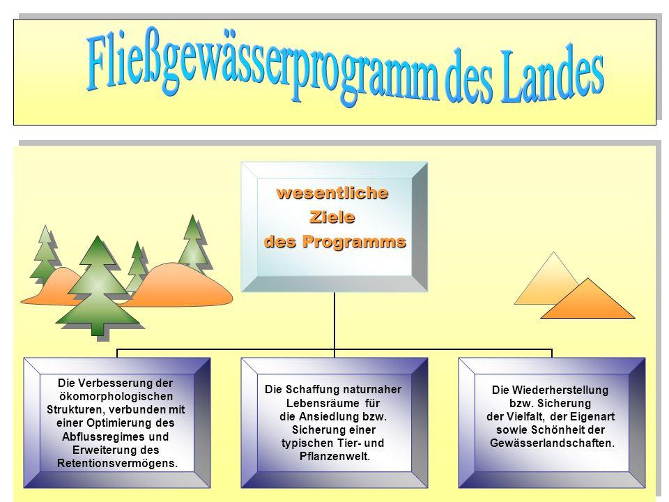 wesentlicheZiele des Programms Die Verbesserung der ökomorphologischen Strukturen, verbunden mit einer Optimierung des Abflussregimes und Erweiterung