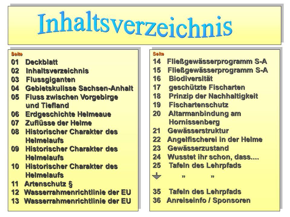 Seite 01 Deckblatt 02 Inhaltsverzeichnis 03 Flussgiganten 04 Gebietskulisse Sachsen-Anhalt 05 Fluss zwischen Vorgebirge und Tiefland 06 Erdgeschichte