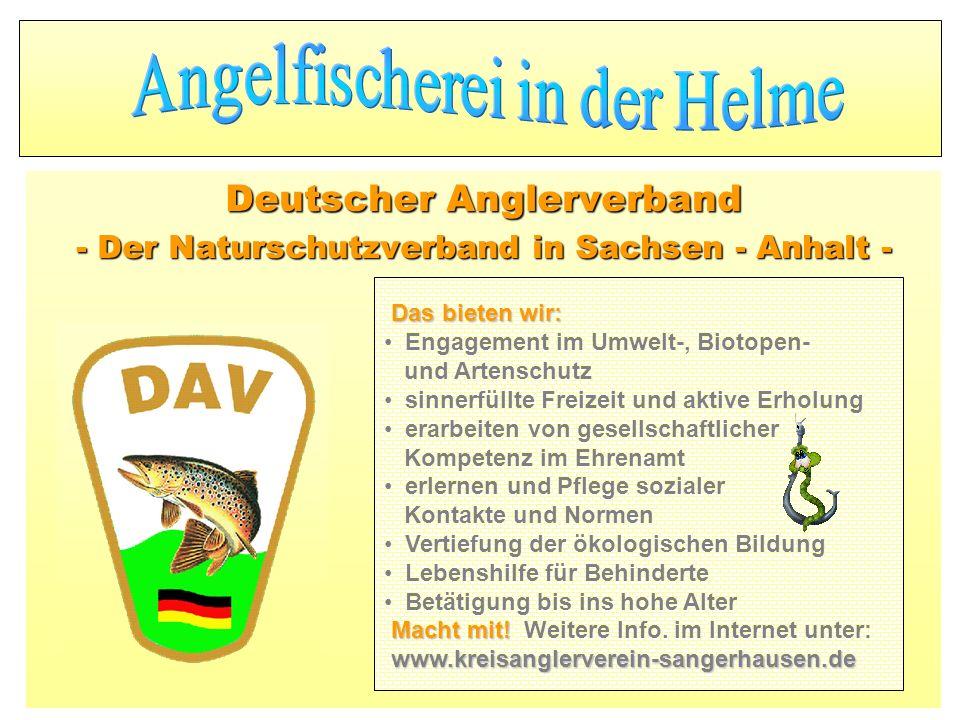 Deutscher Anglerverband - Der Naturschutzverband in Sachsen - Anhalt - Das bieten wir: Engagement im Umwelt-, Biotopen- und Artenschutz sinnerfüllte F