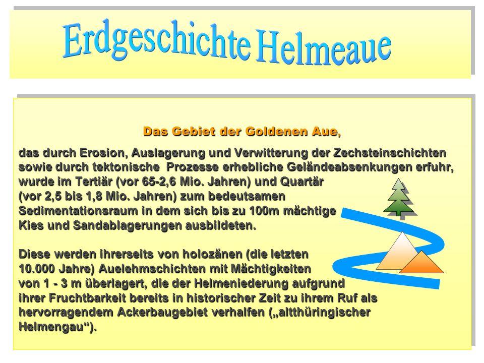 Das Gebiet der Goldenen Aue, das durch Erosion, Auslagerung und Verwitterung der Zechsteinschichten sowie durch tektonische Prozesse erhebliche Geländ
