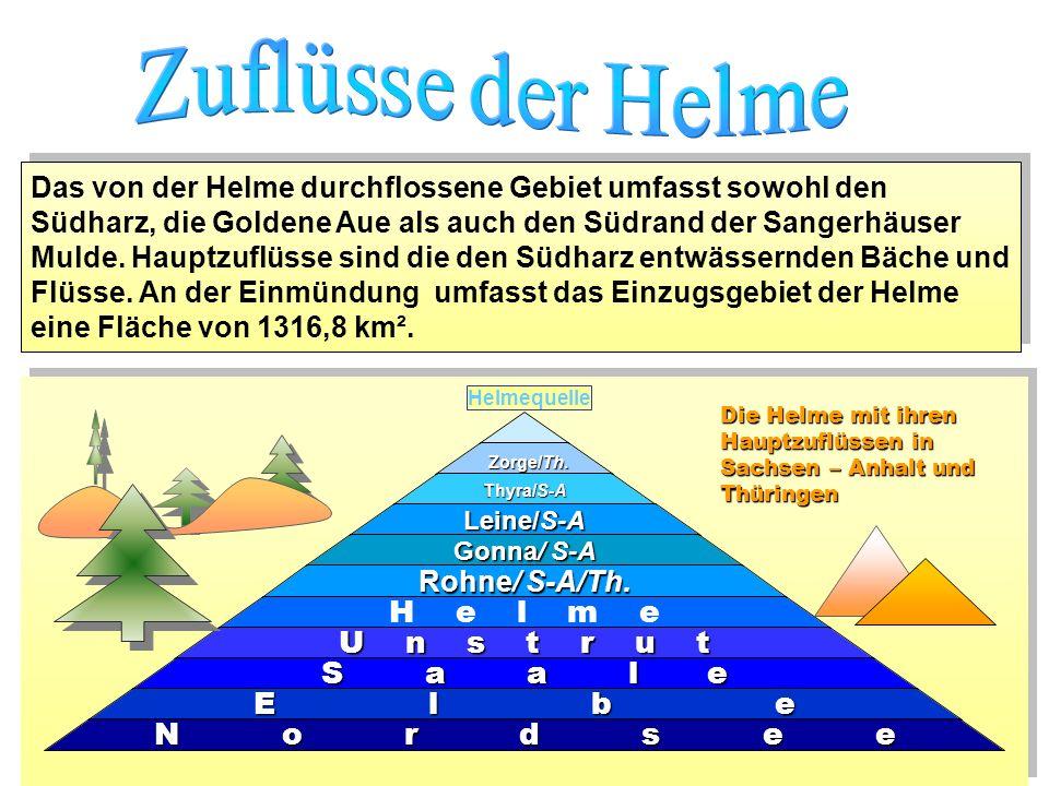 Das von der Helme durchflossene Gebiet umfasst sowohl den Südharz, die Goldene Aue als auch den Südrand der Sangerhäuser Mulde. Hauptzuflüsse sind die