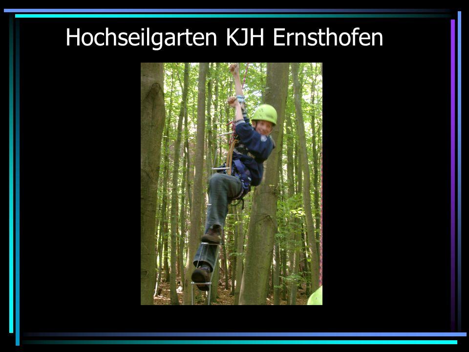 Ablauf des Projekts 2004 Projekttag im KJH Ernsthofen Hochseilgarten Internetrecherche Spinnennetz Spiele zur Suchtprävention Evaluation