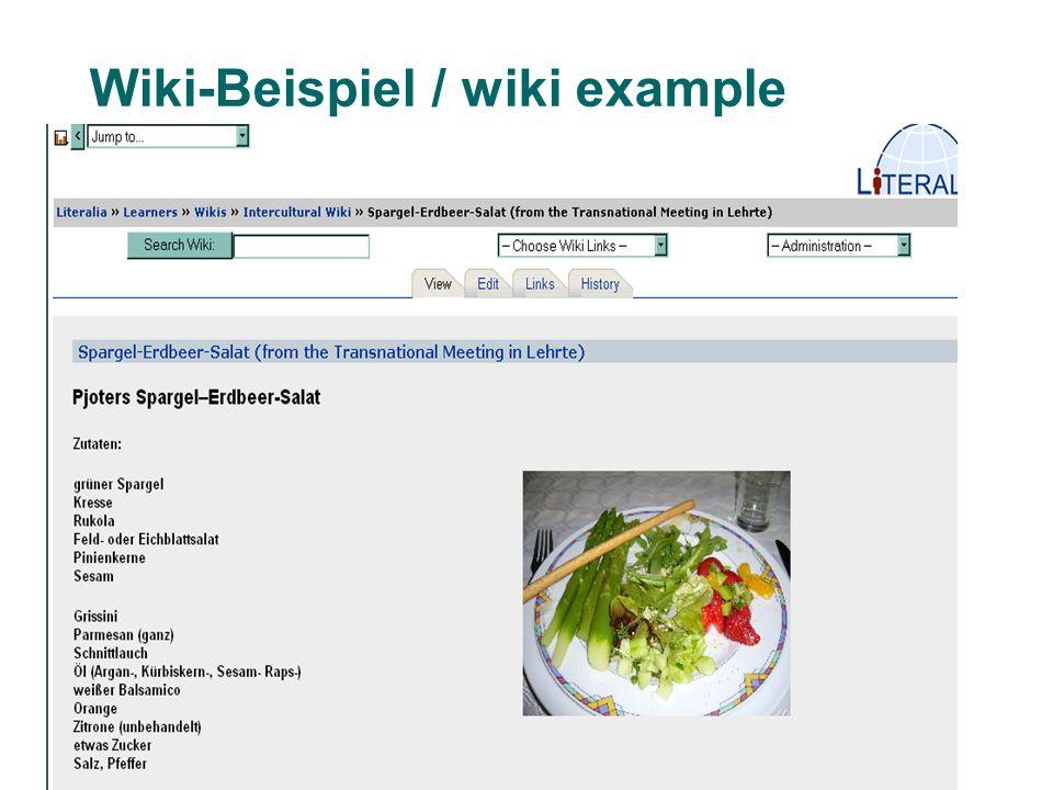 Bremer Symposion 2009 7 Wiki-Beispiel / wiki example