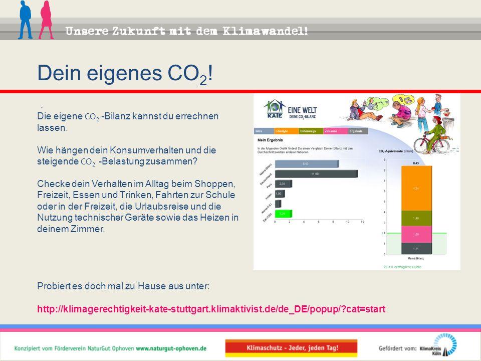 Dein eigenes CO 2 !. Die eigene CO 2 -Bilanz kannst du errechnen lassen. Wie hängen dein Konsumverhalten und die steigende CO 2 -Belastung zusammen? C