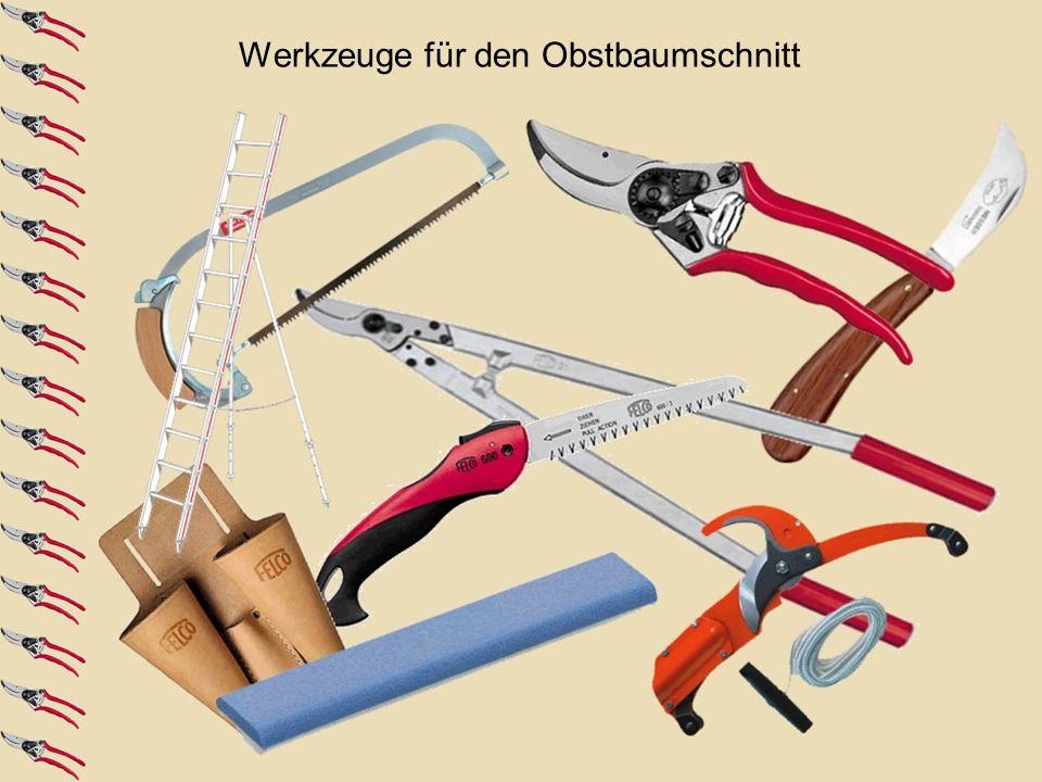 Werkzeuge für den Obstbaumschnitt