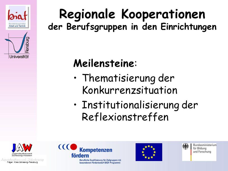 Regionale Kooperationen der Berufsgruppen in den Einrichtungen Hinderliche Faktoren: Zeitmangel Existenzunsicherheit Konkurrenz