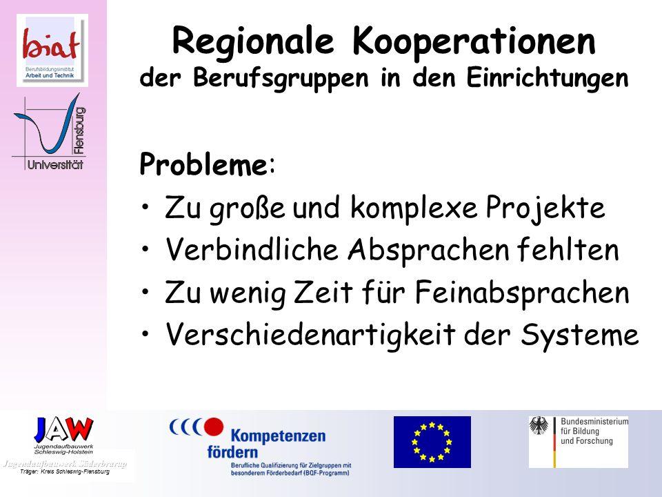 Probleme: Zu große und komplexe Projekte Verbindliche Absprachen fehlten Zu wenig Zeit für Feinabsprachen Verschiedenartigkeit der Systeme Regionale Kooperationen der Berufsgruppen in den Einrichtungen