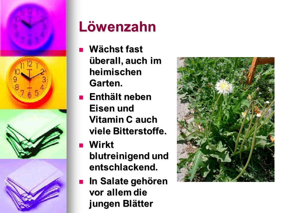 Löwenzahn Wächst fast überall, auch im heimischen Garten. Wächst fast überall, auch im heimischen Garten. Enthält neben Eisen und Vitamin C auch viele