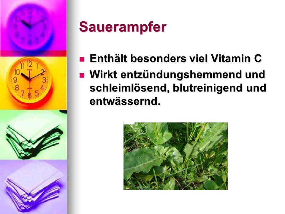 Sauerampfer Enthält besonders viel Vitamin C Enthält besonders viel Vitamin C Wirkt entzündungshemmend und schleimlösend, blutreinigend und entwässern