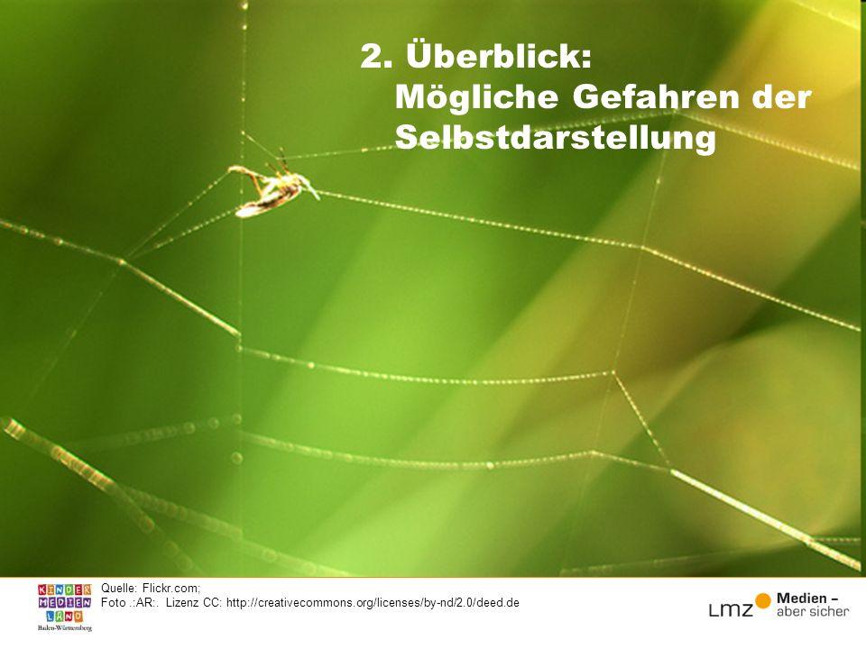 2. Überblick: Mögliche Gefahren der Selbstdarstellung Quelle: Flickr.com; Foto.:AR:. Lizenz CC: http://creativecommons.org/licenses/by-nd/2.0/deed.de
