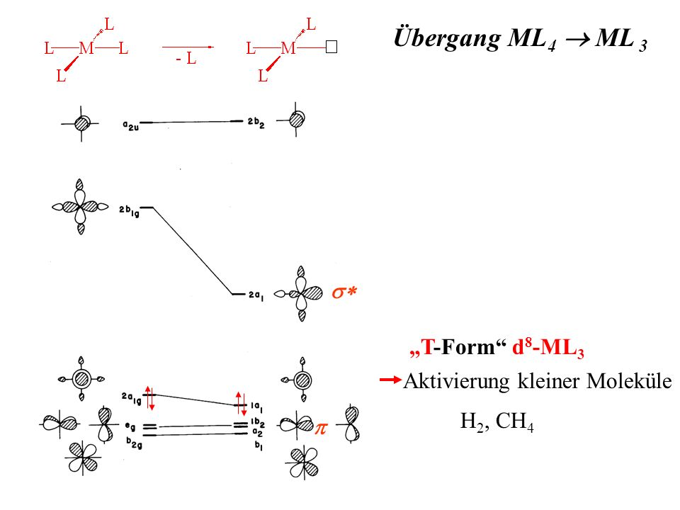 Übergang ML 4 ML 3 T-Form d 8 -ML 3 Aktivierung kleiner Moleküle H 2, CH 4