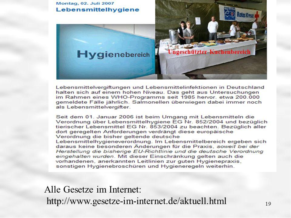 Lebensmittelhygiene 19 Alle Gesetze im Internet: http://www.gesetze-im-internet.de/aktuell.html Ungeschützter Kuchenbereich