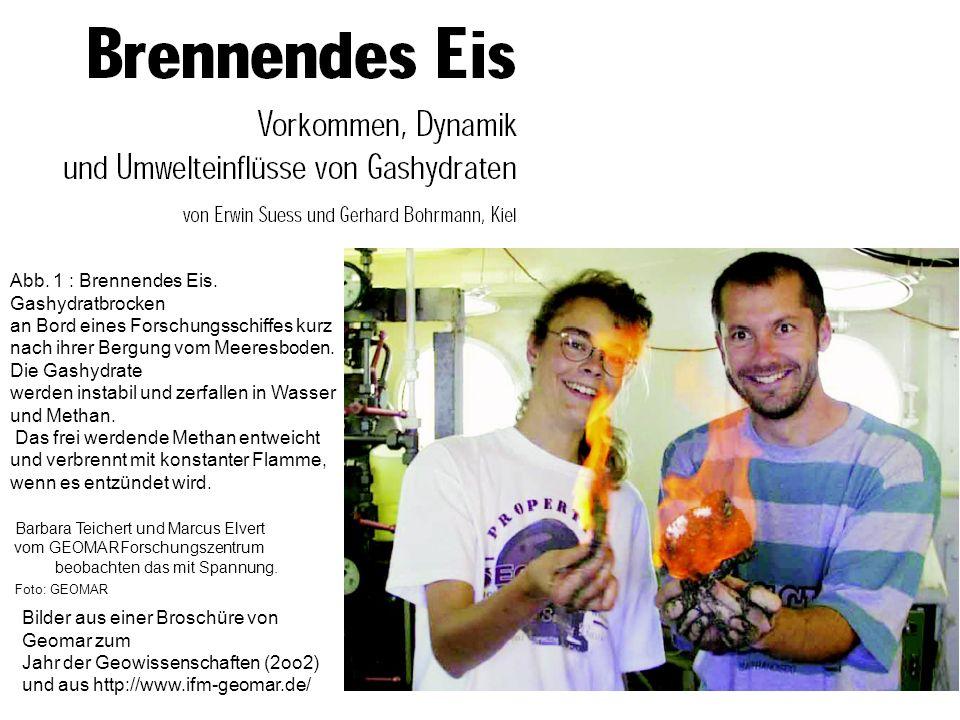 Bilder aus einer Broschüre von Geomar zum Jahr der Geowissenschaften (2oo2) und aus http://www.ifm-geomar.de/ Abb. 1 : Brennendes Eis. Gashydratbrocke