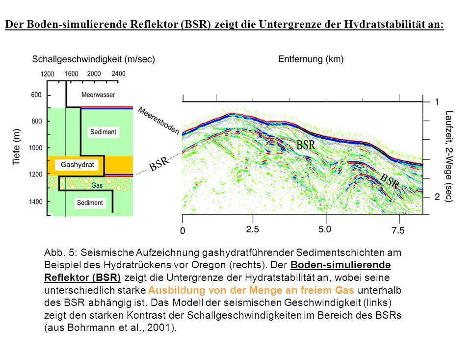 Abb. 5: Seismische Aufzeichnung gashydratführender Sedimentschichten am Beispiel des Hydratrückens vor Oregon (rechts). Der Boden-simulierende Reflekt