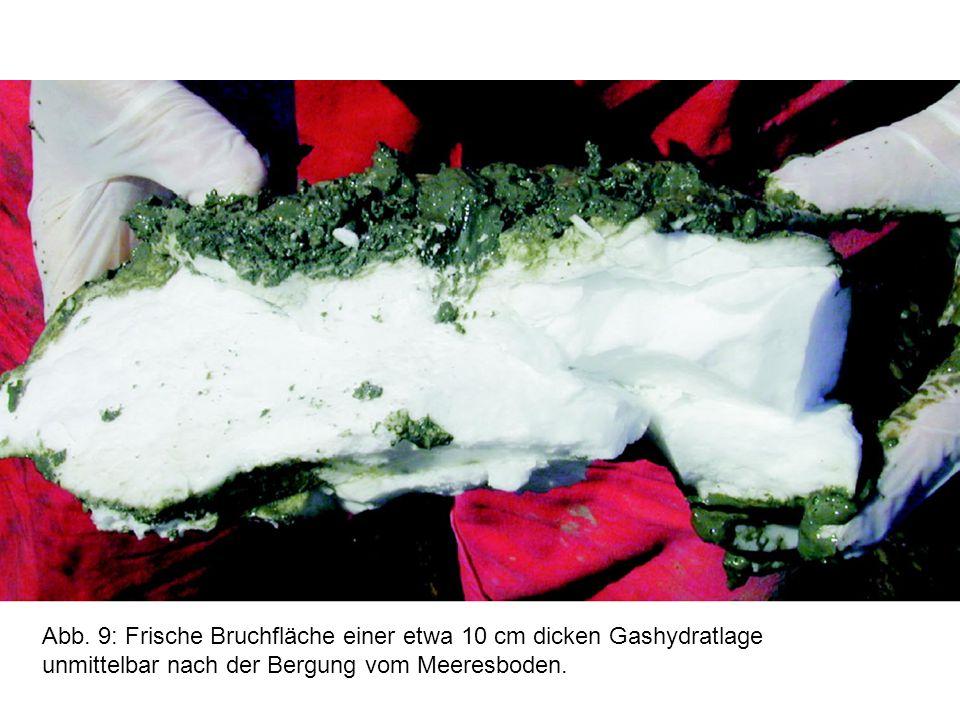 Abb. 9: Frische Bruchfläche einer etwa 10 cm dicken Gashydratlage unmittelbar nach der Bergung vom Meeresboden.