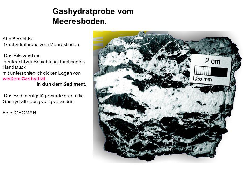 Abb.8 Rechts: Gashydratprobe vom Meeresboden. Das Bild zeigt ein senkrecht zur Schichtung durchsägtes Handstück mit unterschiedlich dicken Lagen von w