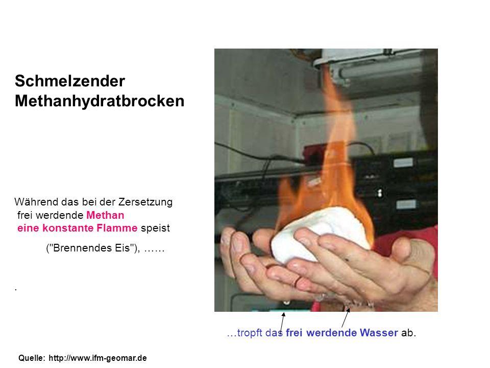 Schmelzender Methanhydratbrocken Während das bei der Zersetzung frei werdende Methan eine konstante Flamme speist (