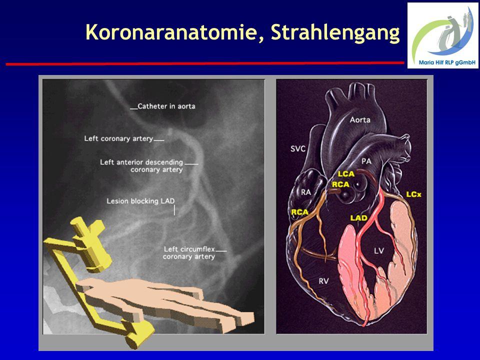 Koronaranatomie, Strahlengang
