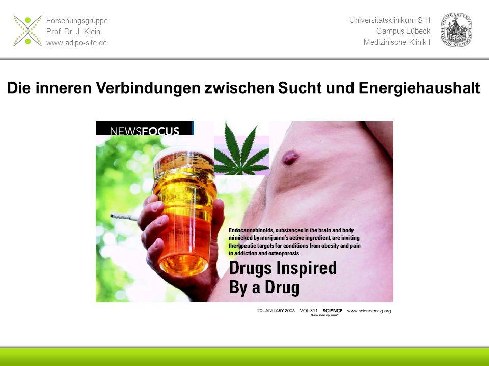 Forschungsgruppe Prof. Dr. J. Klein www.adipo-site.de Universitätsklinikum S-H Campus Lübeck Medizinische Klinik I Die inneren Verbindungen zwischen S