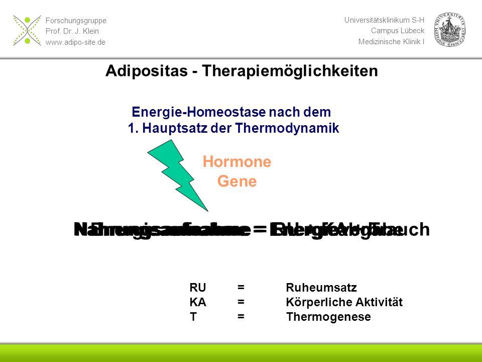 Forschungsgruppe Prof. Dr. J. Klein www.adipo-site.de Universitätsklinikum S-H Campus Lübeck Medizinische Klinik I Energie-Homeostase nach dem 1. Haup