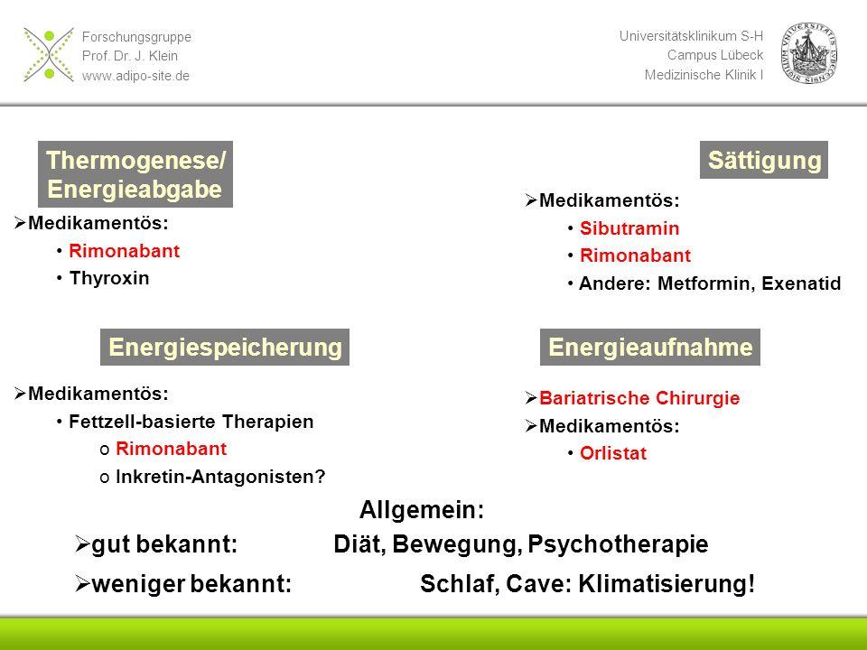 Forschungsgruppe Prof. Dr. J. Klein www.adipo-site.de Universitätsklinikum S-H Campus Lübeck Medizinische Klinik I Thermogenese/ Energieabgabe Sättigu