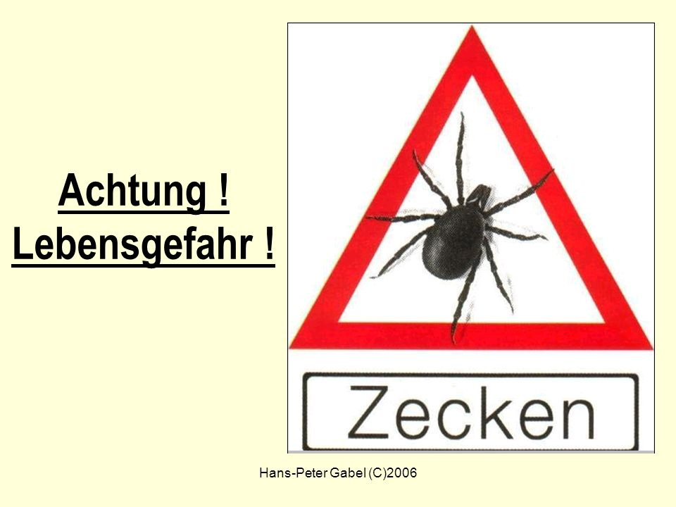 Hans-Peter Gabel (C)2006 Achtung ! Lebensgefahr !