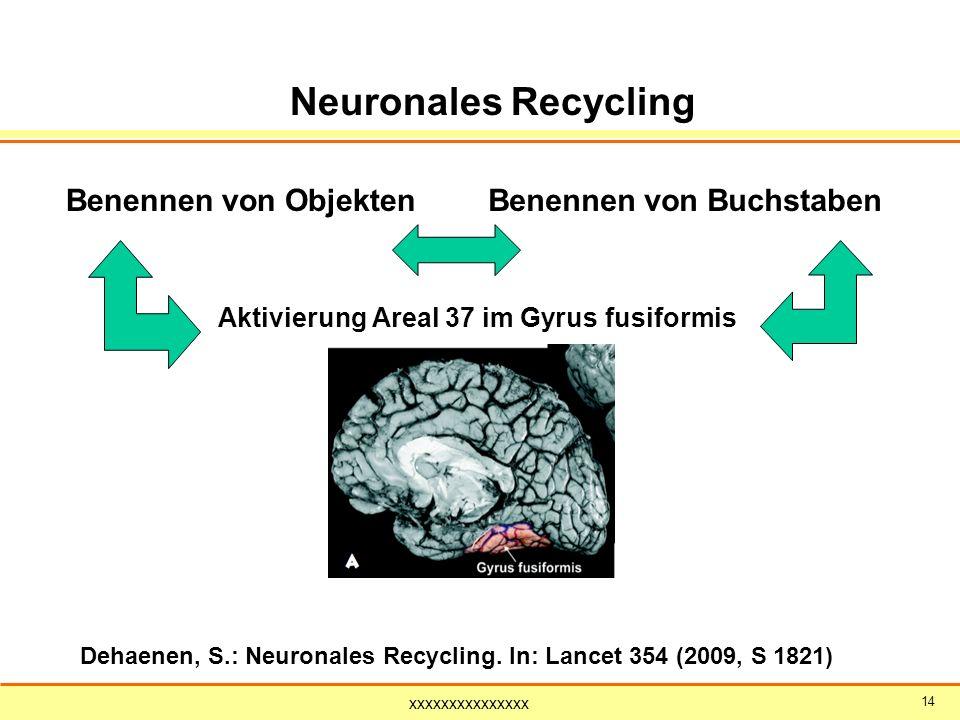 xxxxxxxxxxxxxxx 14 Benennen von ObjektenBenennen von Buchstaben Neuronales Recycling Aktivierung Areal 37 im Gyrus fusiformis Dehaenen, S.: Neuronales