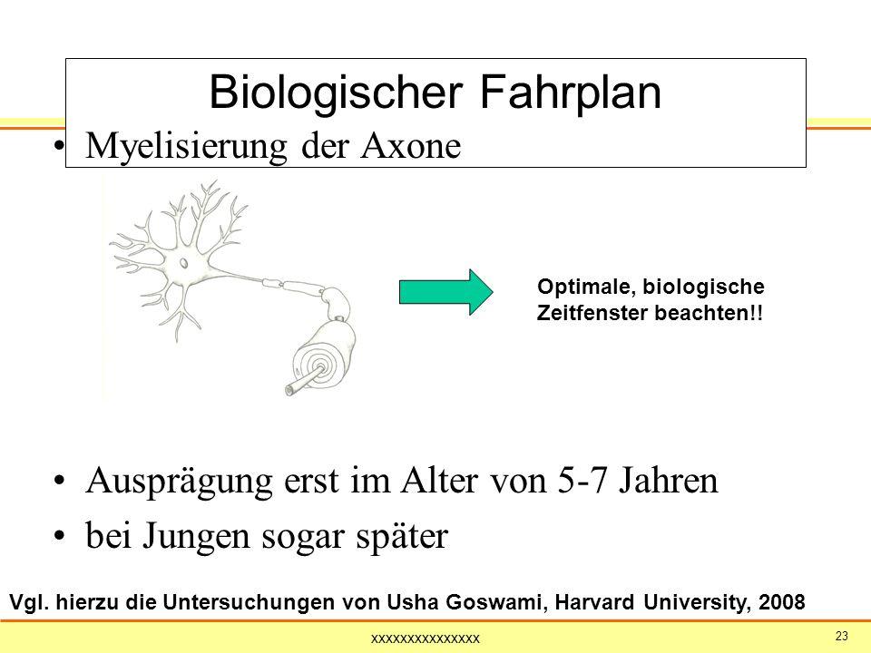 xxxxxxxxxxxxxxx 23 Biologischer Fahrplan Myelisierung der Axone Ausprägung erst im Alter von 5-7 Jahren bei Jungen sogar später Optimale, biologische