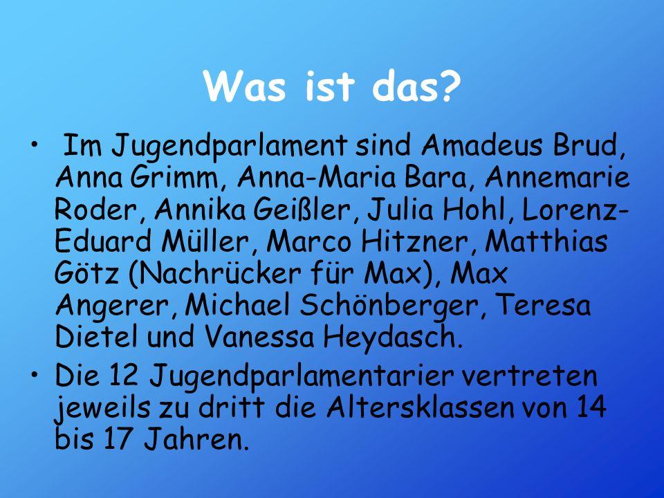 Was ist das? Im Jugendparlament sind Amadeus Brud, Anna Grimm, Anna-Maria Bara, Annemarie Roder, Annika Geißler, Julia Hohl, Lorenz- Eduard Müller, Ma