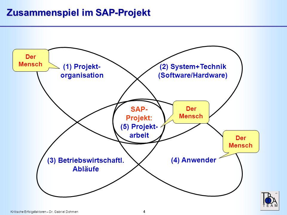 Kritische Erfolgsfaktoren – Dr.Gabriel Dohmen 5 Einführungsstrategie (Zeitplan) Analyse/ Bluepr.