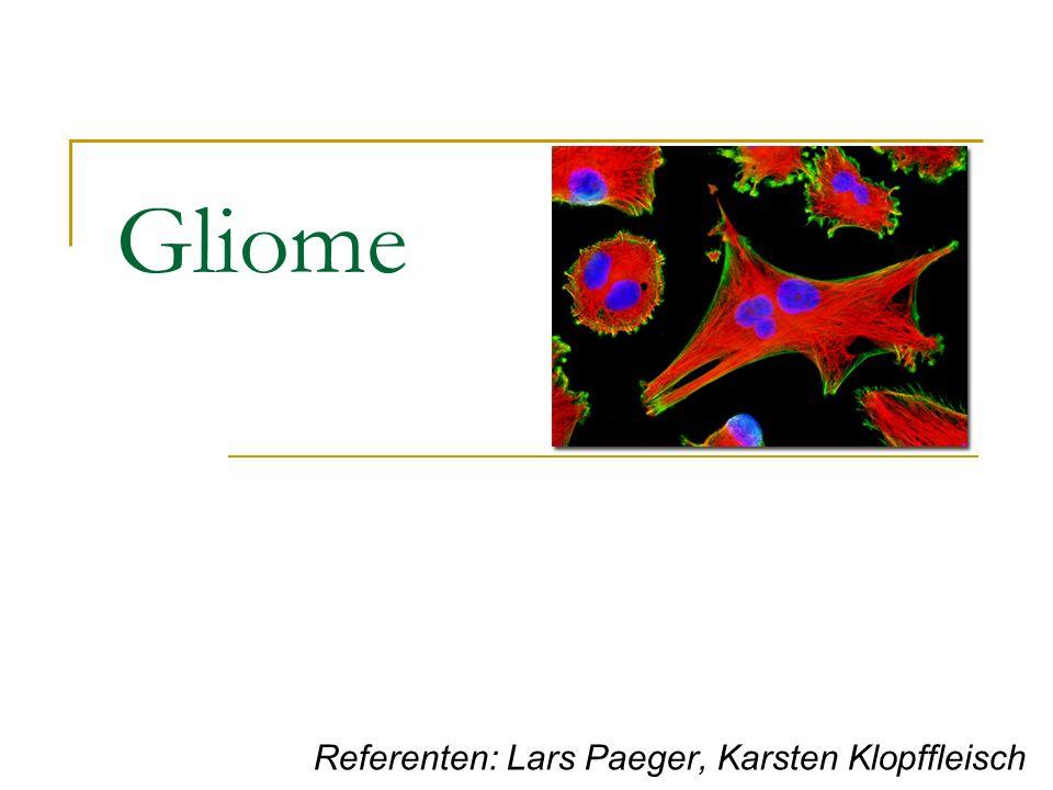 Gliome Referenten: Lars Paeger, Karsten Klopffleisch