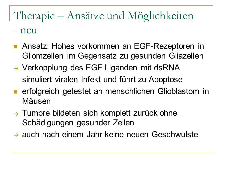 Therapie – Ansätze und Möglichkeiten - neu Ansatz: Hohes vorkommen an EGF-Rezeptoren in Gliomzellen im Gegensatz zu gesunden Gliazellen Verkopplung de