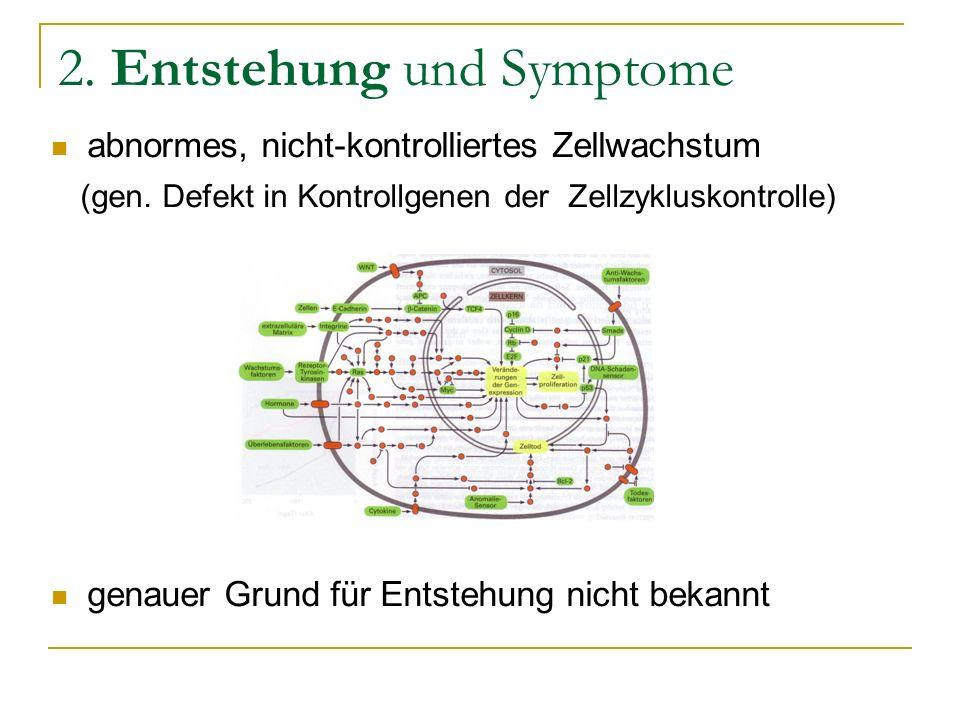 2. Entstehung und Symptome abnormes, nicht-kontrolliertes Zellwachstum (gen. Defekt in Kontrollgenen der Zellzykluskontrolle) genauer Grund für Entste