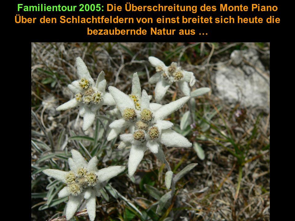 Familientour 2005: Die Überschreitung des Monte Piano Über den Schlachtfeldern von einst breitet sich heute die bezaubernde Natur aus …