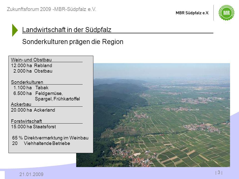 | 3 | 21.01.2009 Zukunftsforum 2009 -MBR-Südpfalz e.V. Landwirtschaft in der Südpfalz Sonderkulturen prägen die Region Wein- und Obstbau 12.000 ha Reb