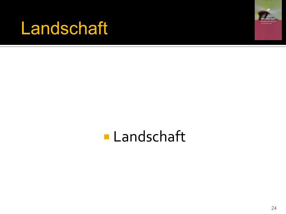 Landschaft 24 Landschaft