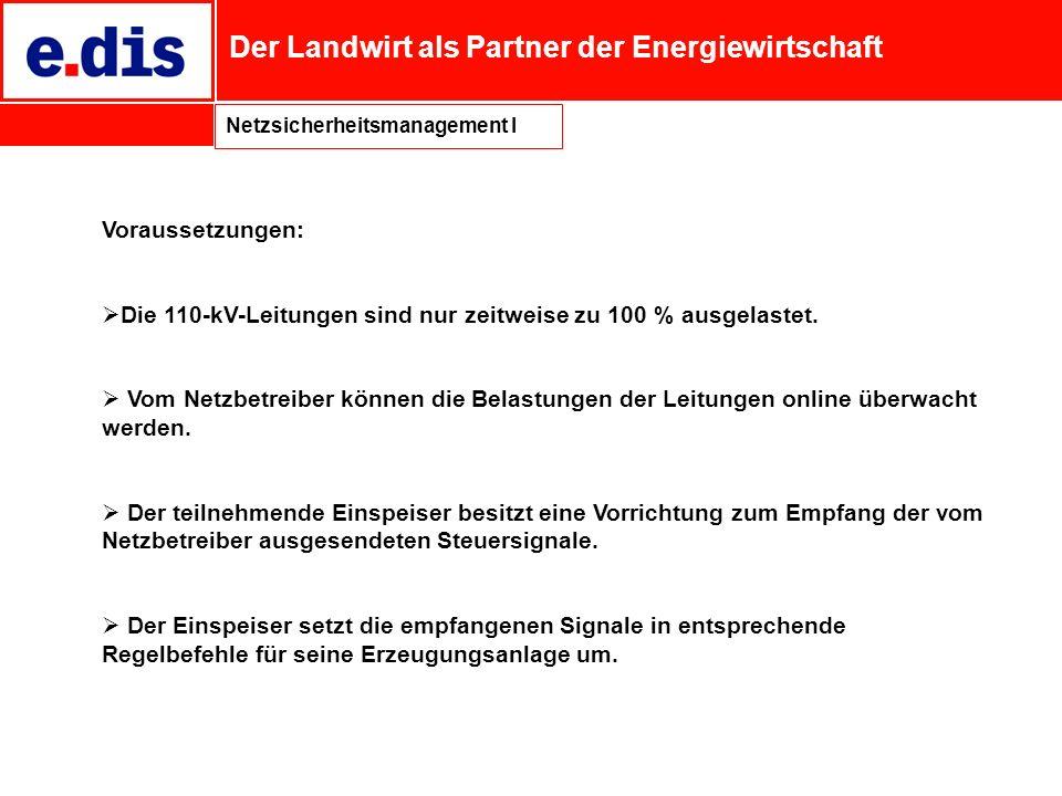 Der Landwirt als Partner der Energiewirtschaft Netzsicherheitsmanagement I Voraussetzungen: Die 110-kV-Leitungen sind nur zeitweise zu 100 % ausgelast