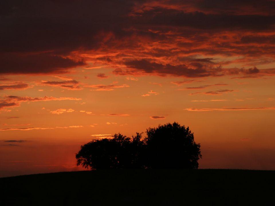 Healing rain is fallin down I´m not afraid Let it rain Open the floodgates of heaven ------------------- Heilender Regen fällt auf uns Ich hab´keine Angst Lass es regnen Öffne die Schleusen des Himmels