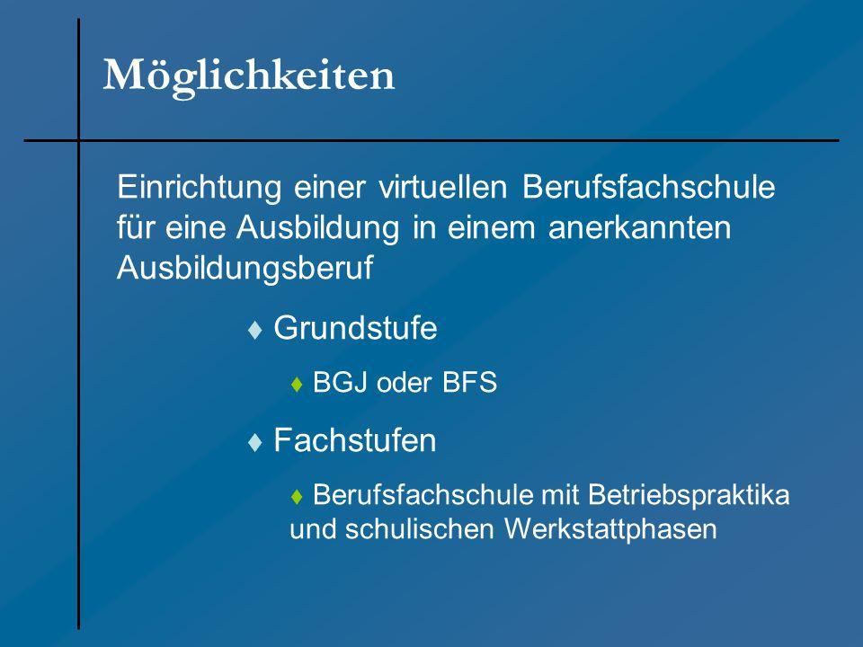 Möglichkeiten Einrichtung einer virtuellen Berufsfachschule für eine Ausbildung in einem anerkannten Ausbildungsberuf Grundstufe BGJ oder BFS Fachstuf