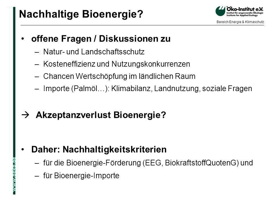 o.de Bereich Energie & Klimaschutz Nachhaltige Bioenergie? offene Fragen / Diskussionen zu –Natur- und Landschaftsschutz –Kosteneffizienz und Nutzungs