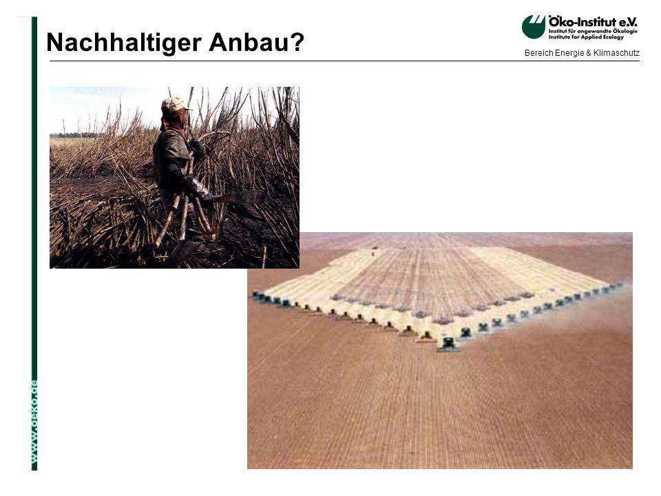 o.de Bereich Energie & Klimaschutz Nachhaltiger Anbau?