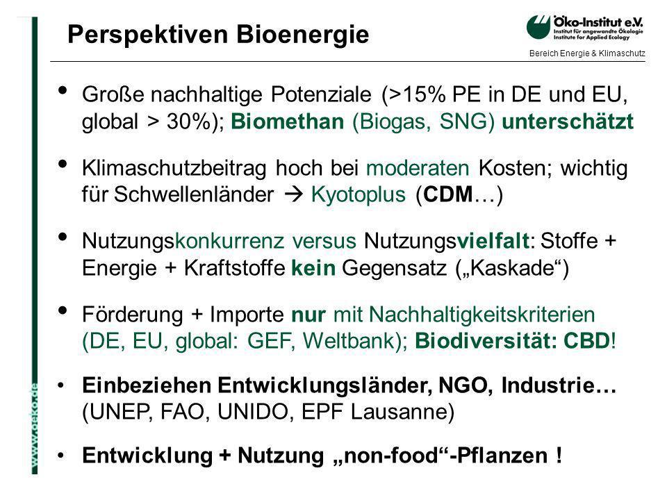 o.de Bereich Energie & Klimaschutz Perspektiven Bioenergie Große nachhaltige Potenziale (>15% PE in DE und EU, global > 30%); Biomethan (Biogas, SNG)
