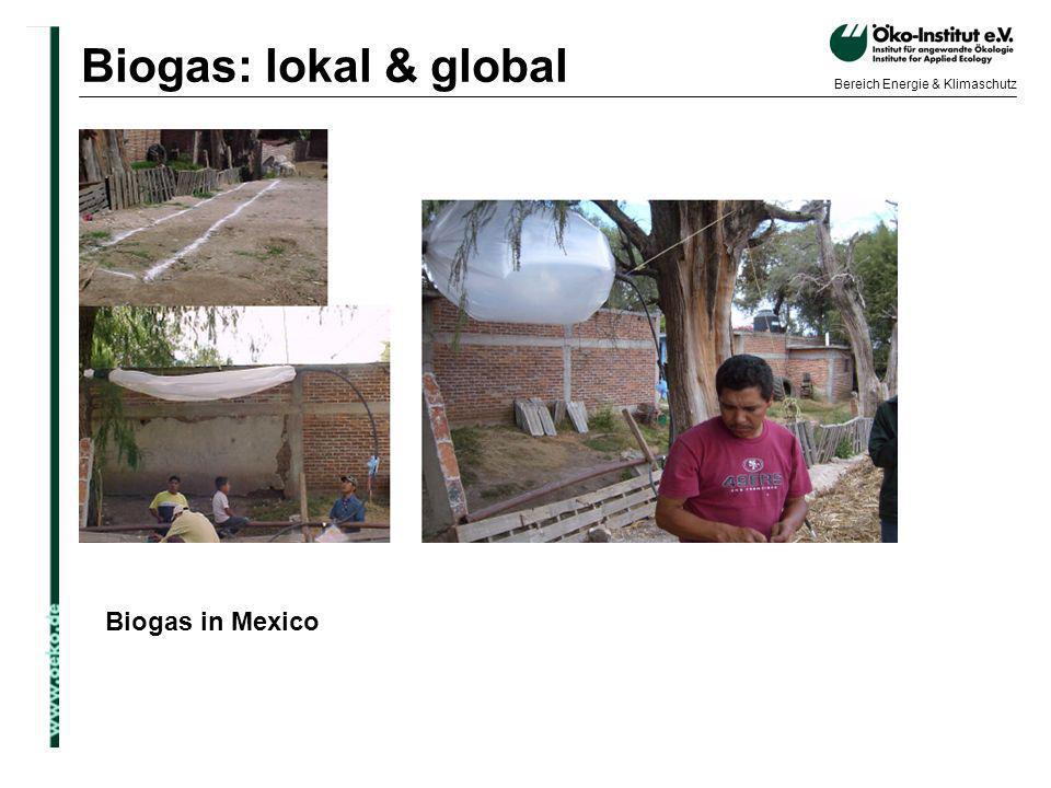 o.de Bereich Energie & Klimaschutz Biogas in Mexico Biogas: lokal & global