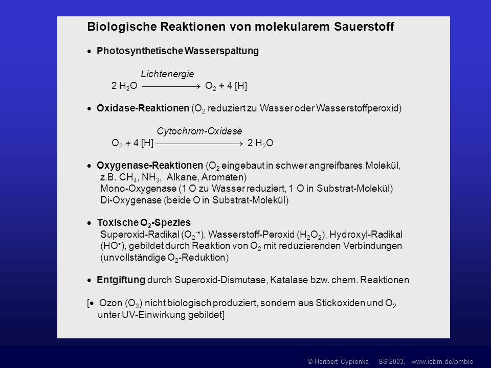 © Heribert Cypionka SS 2003, www.icbm.de/pmbio Biologische Reaktionen von molekularem Sauerstoff Photosynthetische Wasserspaltung Lichtenergie 2 H 2 O