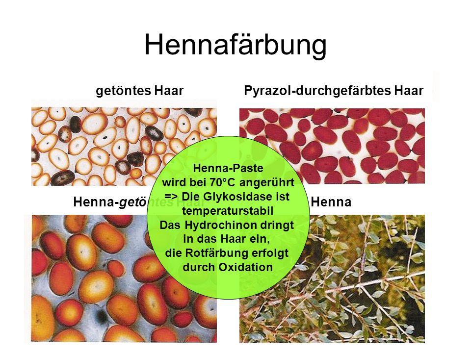 Hennafärbung Henna-getöntes Haar getöntes HaarPyrazol-durchgefärbtes Haar Henna Henna-Paste wird bei 70°C angerührt => Die Glykosidase ist temperaturs