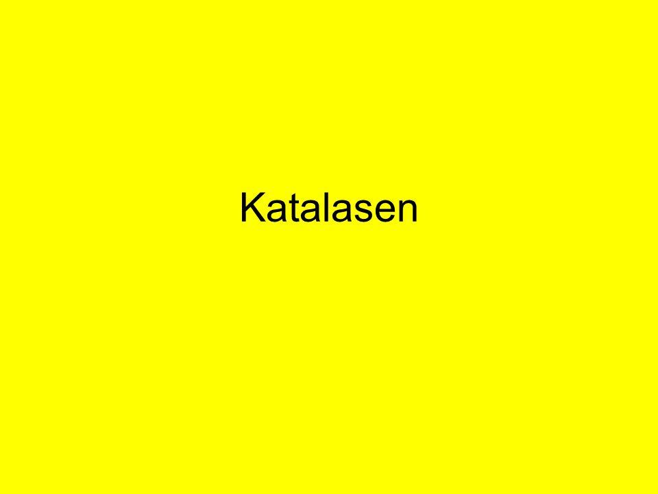 Katalasen