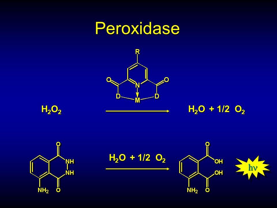 Peroxidase H2O2H2O2H2O2H2O2 H 2 O + 1/2 O 2 h h