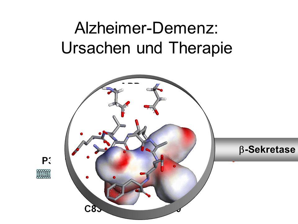 Alzheimer-Demenz: Ursachen und Therapie -Sekretase