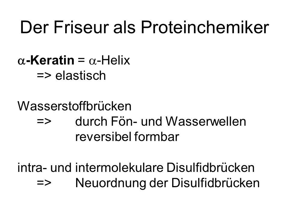 Der Friseur als Proteinchemiker -Keratin = -Helix => elastisch Wasserstoffbrücken => durch Fön- und Wasserwellen reversibel formbar intra- und intermo