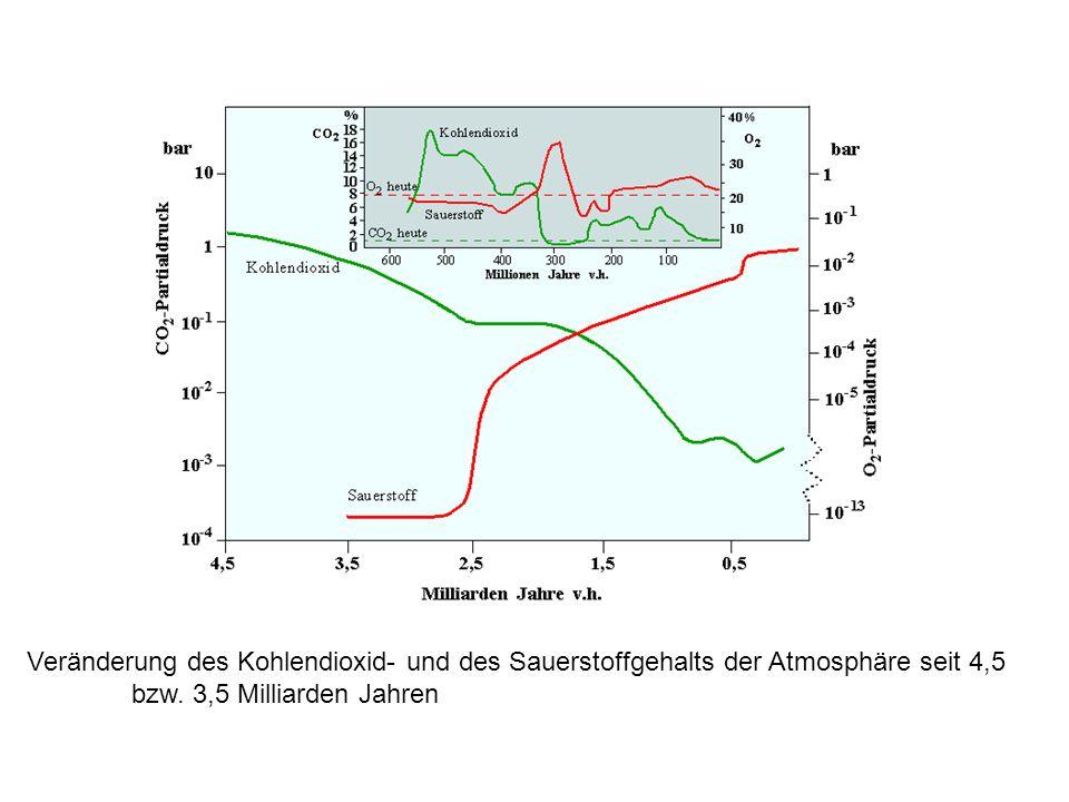 Veränderung des Kohlendioxid- und des Sauerstoffgehalts der Atmosphäre seit 4,5 bzw. 3,5 Milliarden Jahren